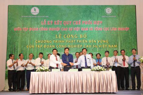 Ký kết hợp tác giữa Cao su Phú Riềng, Cao su Bình Long và Viện Nghiên cứu Lâm sinh