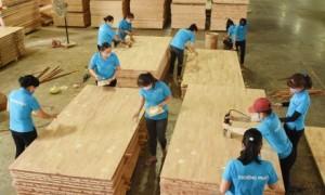 Doanh nghiệp Việt Nam hoàn toàn có khả năng khai thác giá trị cao nhất của ngành goog. Ảnh: Vũ Phong