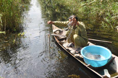 Giăng lưới bắt cá tại kênh rạch chống cháy ven rừng