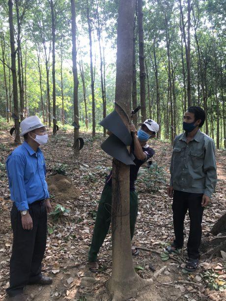 Ông Tạ Thúc Bình - Chủ tịch Công đoàn Công ty kiểm tra công nhân làm máng chắn mưa
