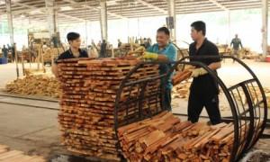 Chế biến gỗ cao su tại Công ty CP Gỗ Dầu Tiếng. Ảnh: Bình Nguyên.