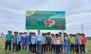 CBNV Công ty Quế Lâm Phương Nam và bà con nông dân tại buổi thu hoạch. Ảnh: LÊ MINH