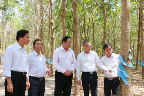 Đại sứ Vũ Quang Minh
