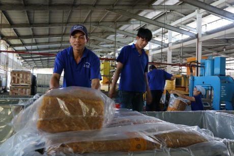 Sản xuất cao su tại Nhà máy chế biến Cua Paris, Công ty CPCS Phước Hòa. Ảnh: Ngọc Cẩm.