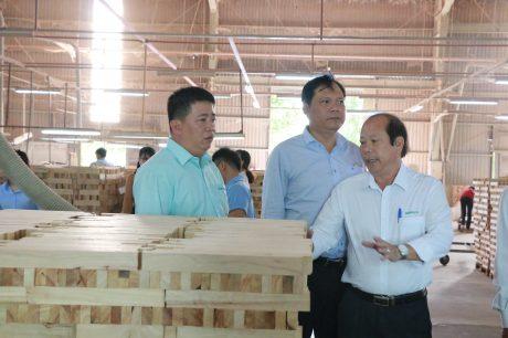 Lãnh đạo các công ty gỗ tham quan Nhà máy chế biến Gỗ Tây Ninh