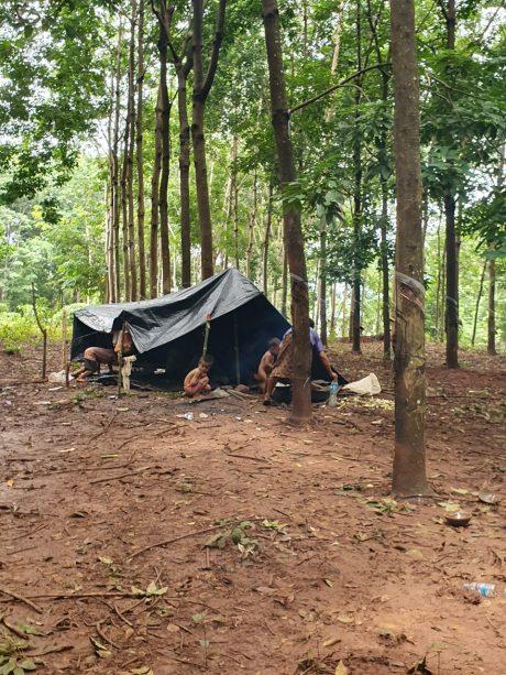 Những căn lều dựng tạm bợ tại lô cao su trong vùng dự án