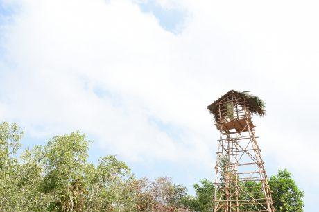 Vọng gác chống cháy và bảo vệ rừng được nhân viên bảo vệ đóng bằng cây keo, cây tràm từ rừng.