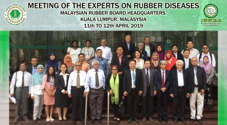 Các đại biểu tham dự cuộc họp tại Malaysia.