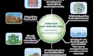 Chính sách phát triển bền vững của VRG